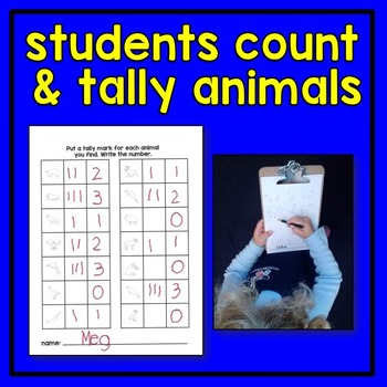 Zoo Animal Count the Room Math Center