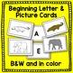 Zoo Animal Literacy Playing Cards