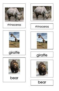 Zoo Animals (3 Piece Montessori Cards)