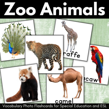 Zoo Animals and Birds Vocabulary Photo Flashcards for Special Education, ESL