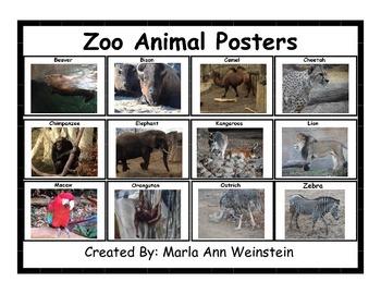 Zoo Animals Bundle