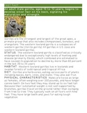 Zoo Animals Close Reading