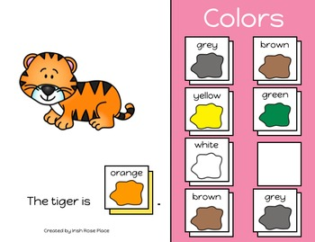 Zoo Animals Color Book (Adapted Book)