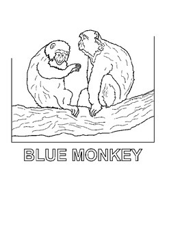 Zoo Animals Coloring book 58 pages