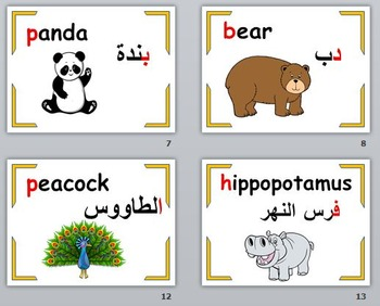 Zoo Animals Flashcards:English and Arabic