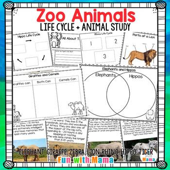 Zoo Animals Life Cycle + Animal Study Elephant, Giraffe, Zebra, Lion, Tiger +