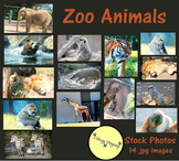Zoo Animals - Stock Photos - Photo Pack Bundle - Tiger, Bear, Zebra, Lion & More