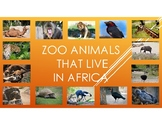 Zoo Animals That Live in Africa-Pictures, diet, habitat, attributes, babies.