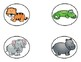 Zoo Animals Vocabulary Word Cards
