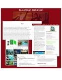 Zoo Animals WebQuest (2nd - 3rd Grade)