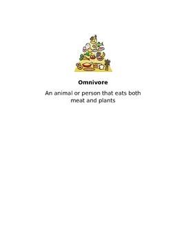 Zoo Exploration Vocabulary Cards