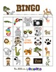 Zoo Games and Activities for First, Second and Third grades