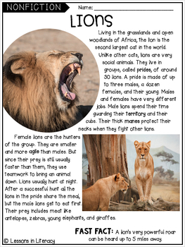 Zoo Close Reading
