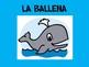 Zoo & Ocean Animal Vocabulary PowerPoint