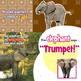 Zoo Peek-a-Boo eBook & Audio Track