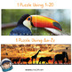 Zoo Puzzle Strips (Number and Letter Recognition with Real Photos)