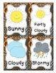 Zoo Themed Weather Display