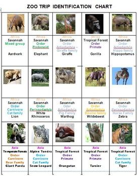 Zoo Trip Pictominoes