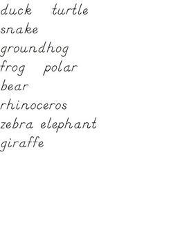 Zoo Unit Word Wall