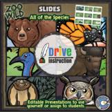 Zoo Wild -- Wildlife Activity Sheet eBook -- Volume 2