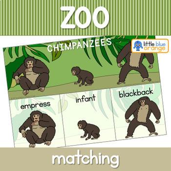 Zoo animal families activity