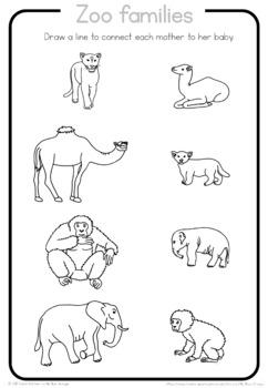 Zoo animal families  worksheet