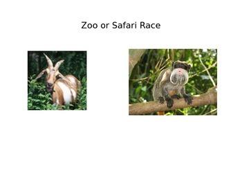 Zoo or Safari Race