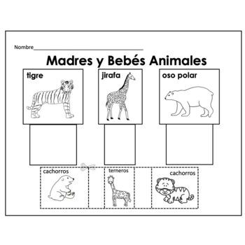 Zoológico Contar Diversión Para Preescolar & Primer Grado/ Counting in Spanish