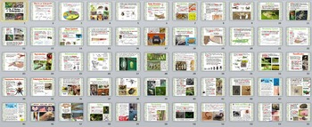 Zoology – Arthropod PowerPoint Presentation (insects, spiders, crustaceans)