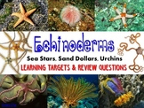 Zoology – Echinoderm Learning Targets and Review Questions
