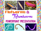 Zoology: Flatworms and Roundworms Powerpoint Presentation