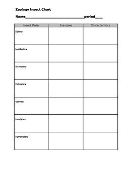 Zoology Insect Chart