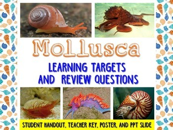 Zoology – Mollusks Learning Targets and Review Questions