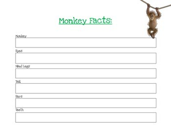 Monkey Facts