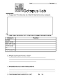 Zoology Octopus Lab Dissection