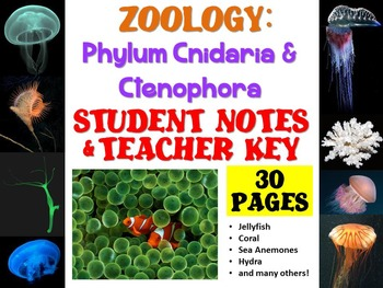Zoology: Phylum Cnidaria and Ctenophora Notes Handout and Teacher Key