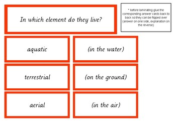 Zoology Question Answer Game By Elementary Observations Tpt