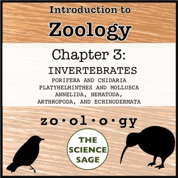 Zoology Textbook Chapter 3 Invertebrates