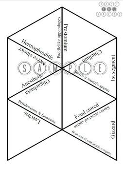 Zoology Vocab Puzzle: Annelida
