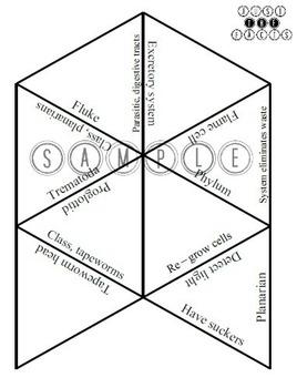Zoology Vocab Puzzle: Platyhelminthes