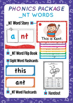 '_NT WORDS' Phonics Lesson Package