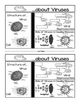 ...about Viruses