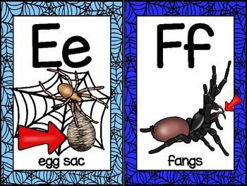 alphabet_half page: spider theme