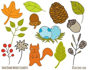 and drawn clip art - Woodland Clip art - Leaves -San Jones Illustration