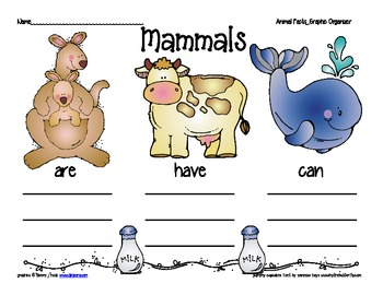 animal facts graphic organizer