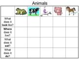 animal graphic organizer