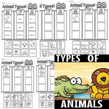 animal types bundle