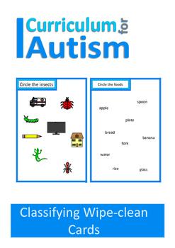 Classifying Vocabulary, Write & Wipe Autism Special Educat