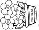 How Groundhog's Garden Grew Lesson 25  aw sound Flower craft