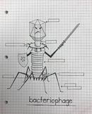 bacteriophage color/label sheet